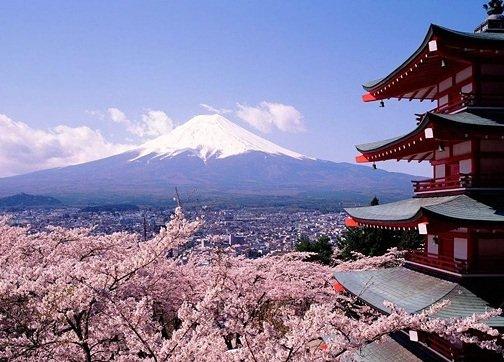 Спиртные напитки Японии, Спиртные напитки